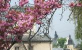 Kto rano wstaje, temu Kraków daje. Śladami Jana Pawła II na rowerze