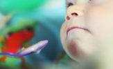Wigilia Malucha, czyli przepis na dietetyczne uszka