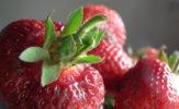 Chłodników krakowskich smak: Sexsi z truskawek, grecki cytrynowy, melonowy i z ogórkiem