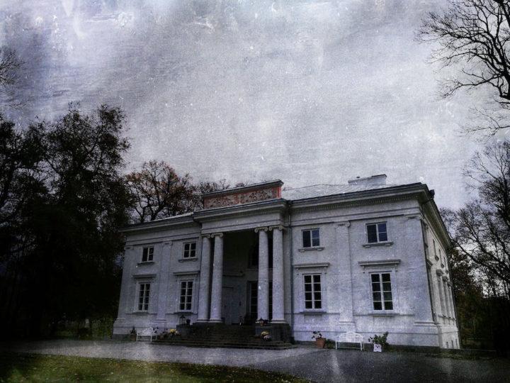 Pałacowa w Cieleśnicy